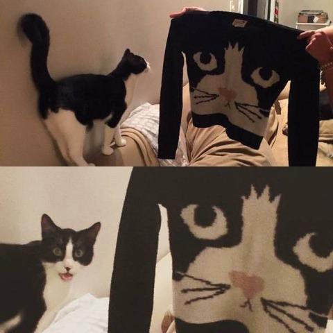お前の顔のセーター