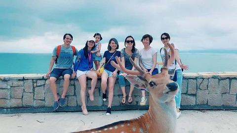 鹿がしっかり映った記念写真。