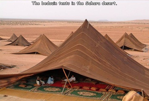 ベドウィン(遊牧民族が張るテント)