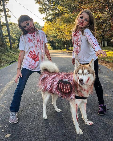 ハロウィンのコスプレをする二人の少女とイヌ
