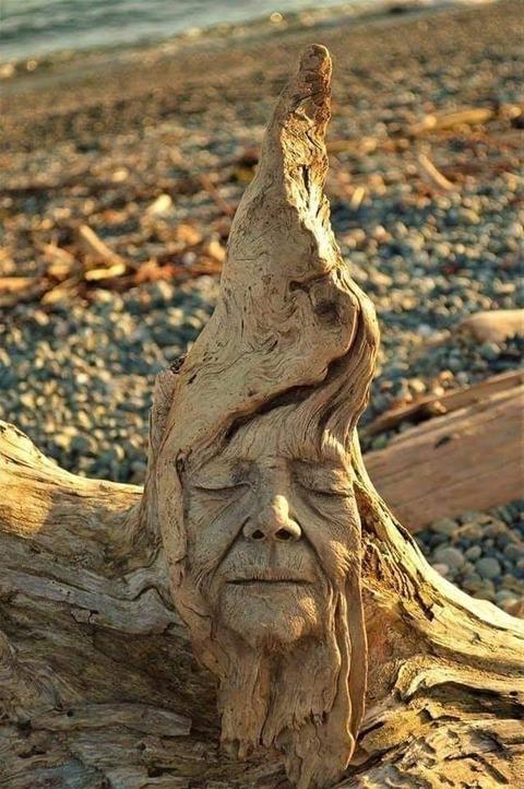 流木に彫刻
