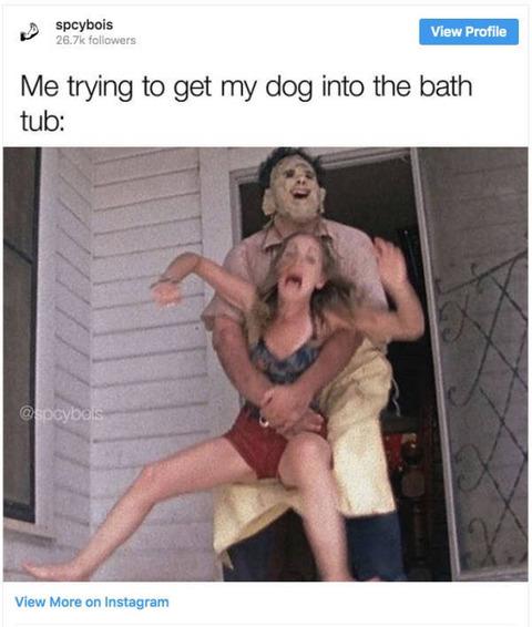 風呂に入れられる時のイヌの気持ちを人間女性であらわした画像