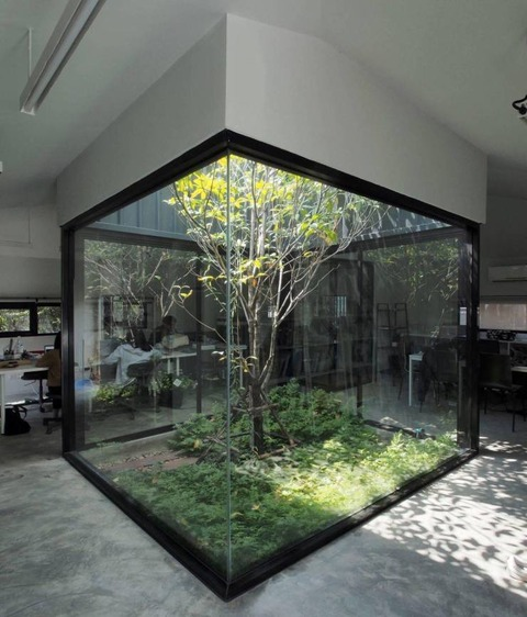 素敵な中庭