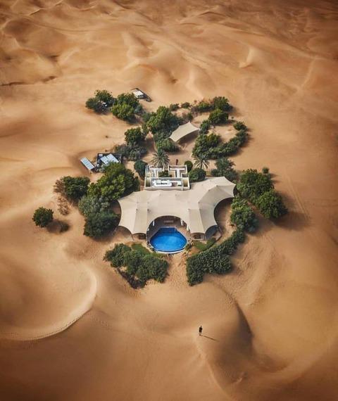 砂漠のオアシス098098