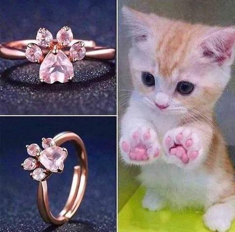 ネコの肉球の指輪