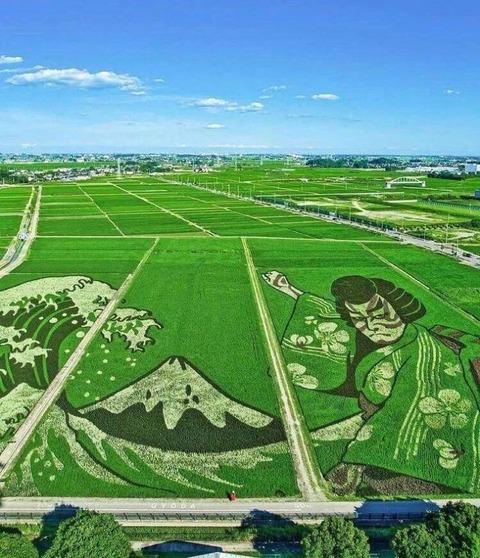 日本の行田市の田園風景が凄い
