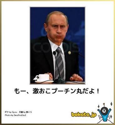 激おこプーチン丸