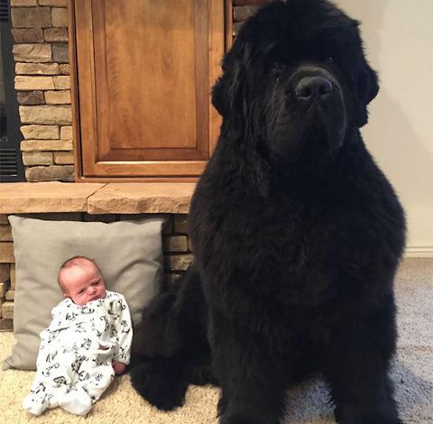 ちょうど一口サイズの赤ちゃん