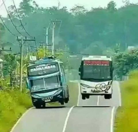 躍動感のあるバスの競い合い