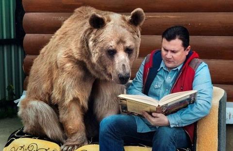 クマに絵本を読み聞かせ。