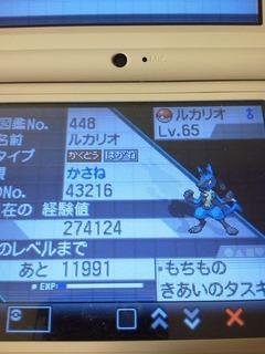 NEC_0319