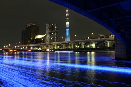 東京ホタルとスカイツリー2
