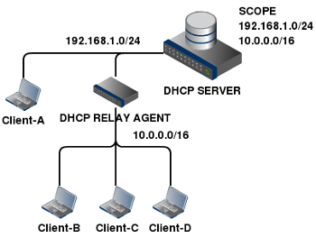 dhcp-storm-network1