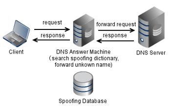 DNS_Ans_Machine1