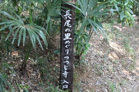 長ノ尾の里つつじ寺