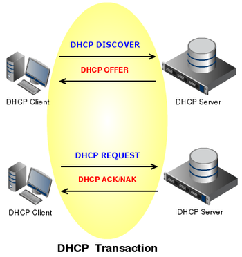 dhcp-transaction