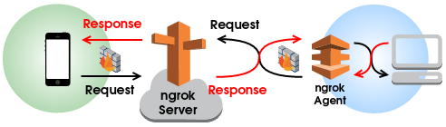 ngrok_network_overview