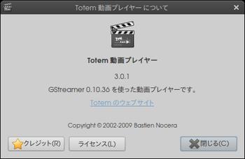 totem_info