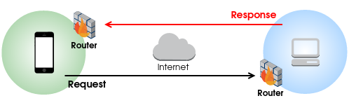 basic_nat_firewall_model