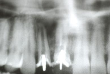 DSC_0452