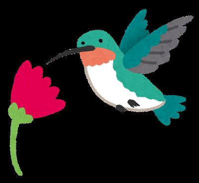 bird_hachidori