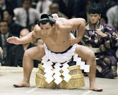 【悲報】千代の富士みたいな心技体揃ったイケメン力士、いない
