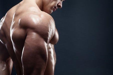 かっこいい筋肉ランキングwwwwwwwwwwwwwwww