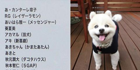 吉本坂46 第一次審査に『犬』が合格していたことが判明wwwwww