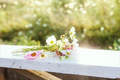 【画像】お前らほんとに結婚しなくていいの?結婚したらこんな幸せな毎日が待ってるんだぞ?wwwwww