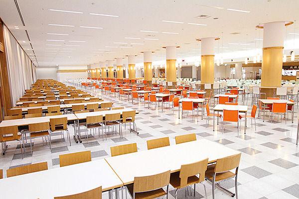 【画像】ワイの大学の学食(350円)wwwww