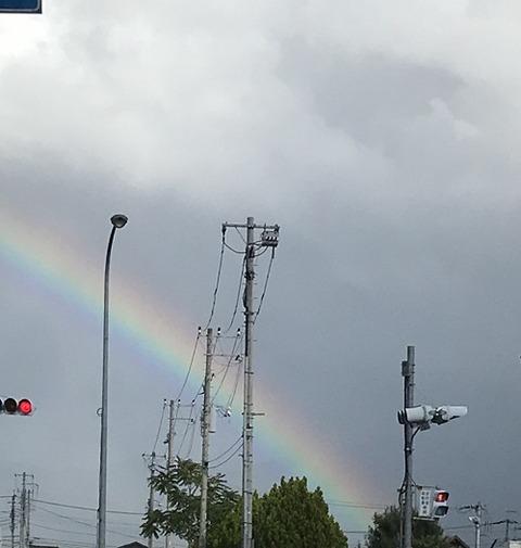 やっぱり、虹に感激