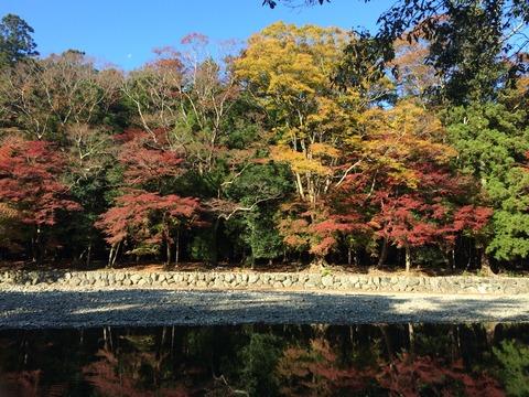 五十鈴川 対岸紅葉1
