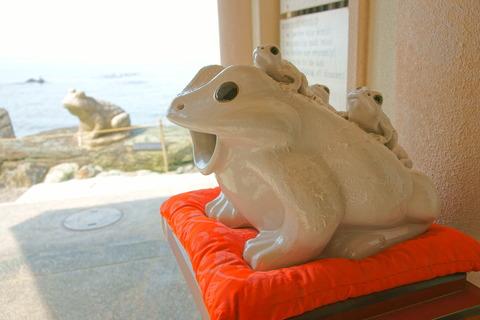 二見興玉神社 白蛙