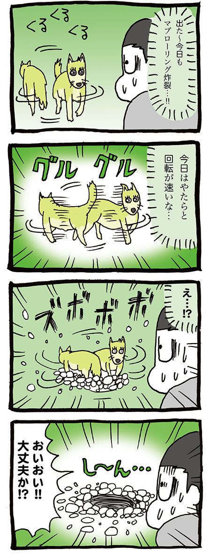 回転して地面に潜る犬のマンガ01