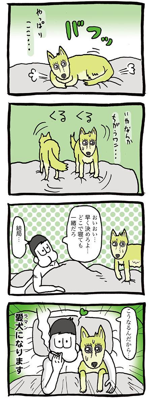 寝る時クルクル回る犬のマンガ02