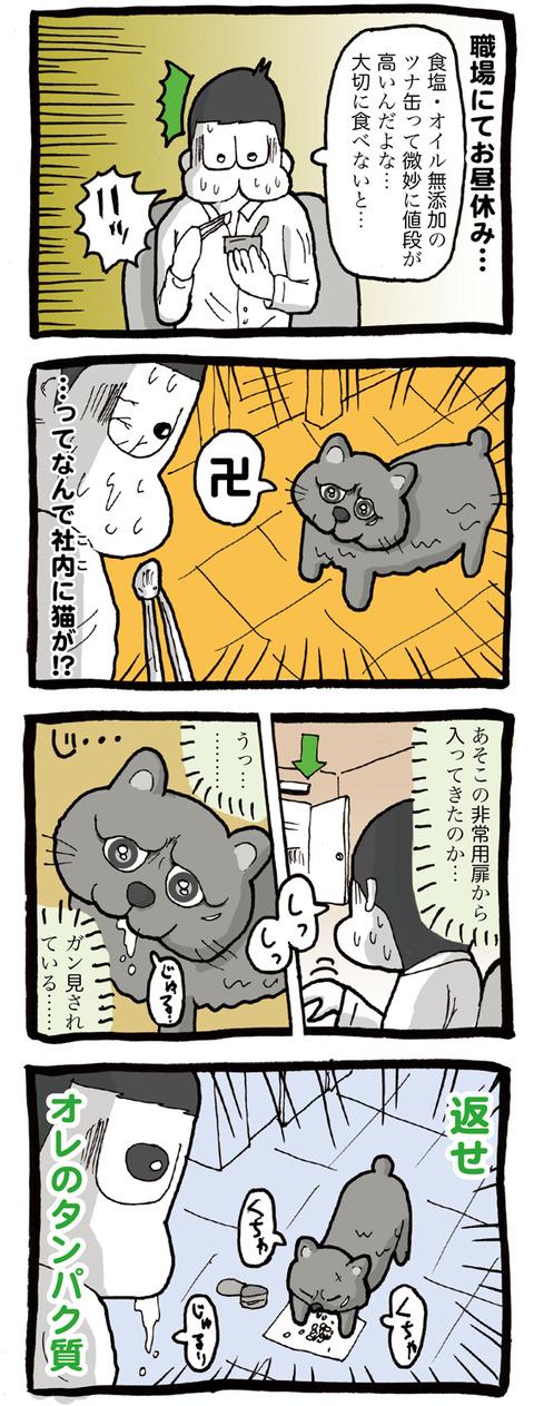 オフィス内に侵入してくる野良猫「クロ」との出会い編。いつも僕のタンパク質(エサ)を奪っていくにくいやつ。。