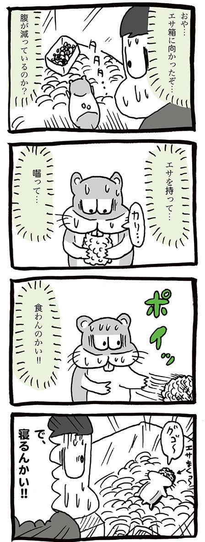 ハムスターお迎え初日の漫画02