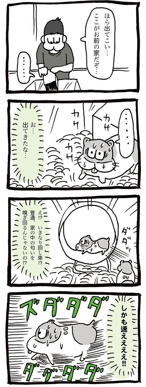 ハムスターお迎え初日の漫画