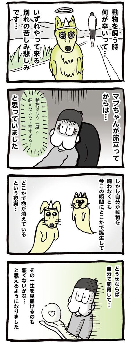 新しくペットを飼おうか悩む漫画