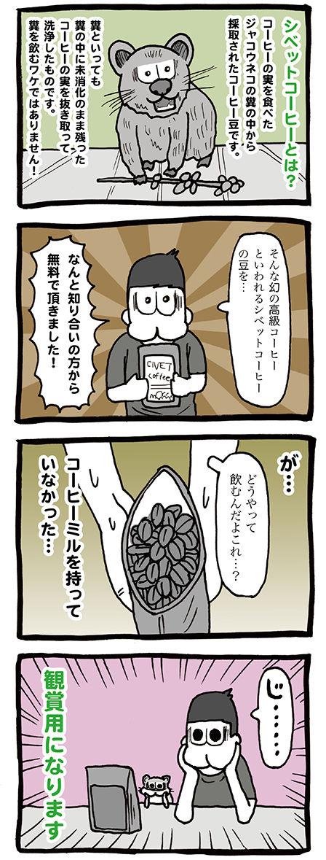 幻の高級コーヒー、シベットコーヒー(CIVET COFFEE)の豆を頂きました!!
