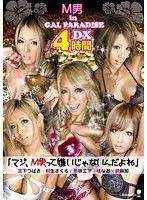 M男 in GAL PARADISE DX4時間