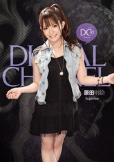 DIGITAL CHANNEL DC85 ��������