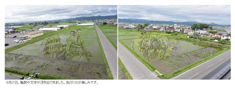 田んぼアート1-04_0621