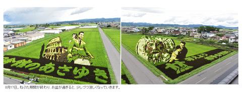 田んぼアート1-12_0817