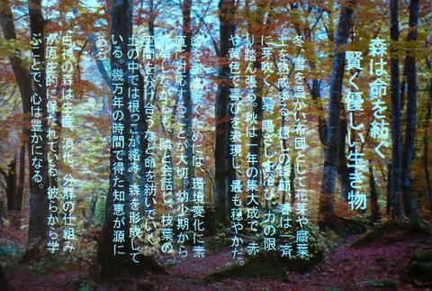 IMG_1988(行松)