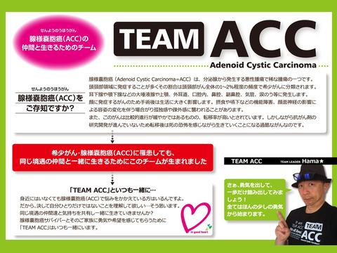 ACCOnLineCafe2020003