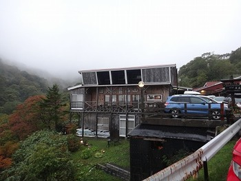 tamuraDSC06158