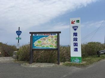 tamuraIMG_8749