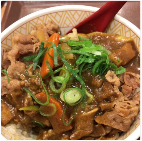 すき家『カレー南蛮牛丼』