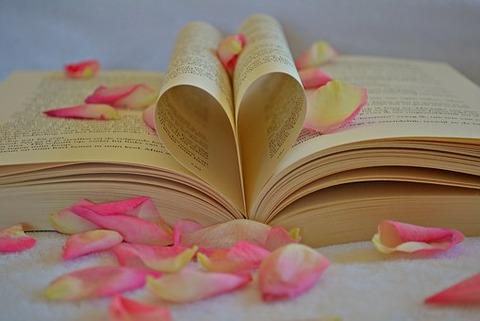 book-1169437__340